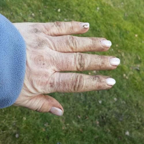 Gröna fingar