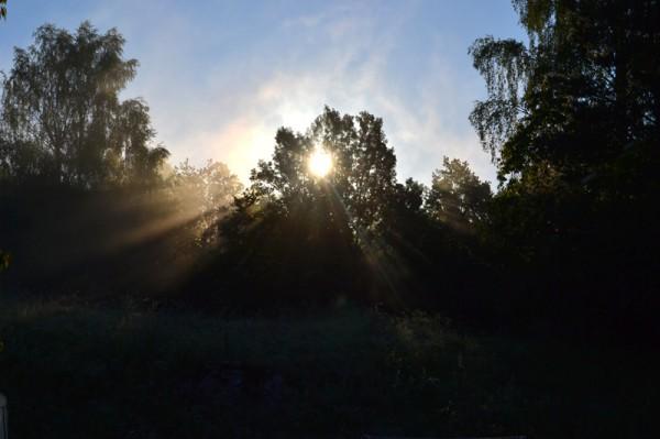God sommarmorgon!